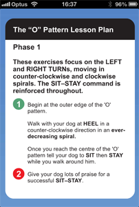 Preview of the K9 Master Class APP which shows the 'O' Pattern Lesson Plan in a mobile screen